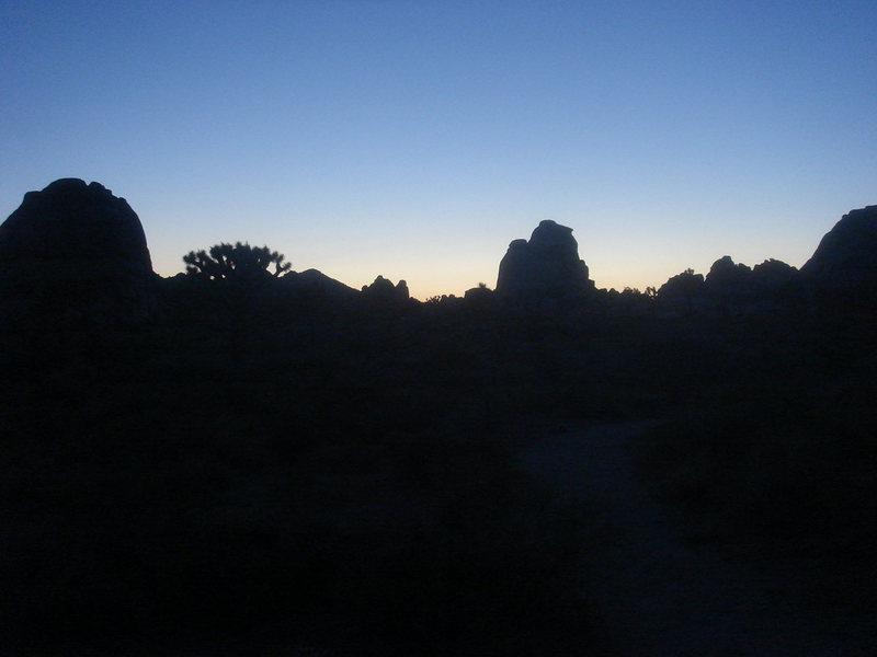 Sunset, Joshua Tree NP.