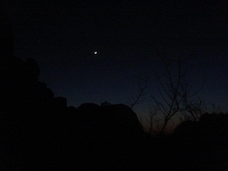 Crescent moon, Joshua Tree NP.