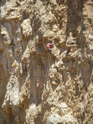 Rock Climbing Photo: EFR steals another FA from an injured brother. Lea...