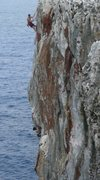 Rock Climbing Photo: Throwin the Tortuga on  Cayman Brac