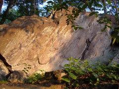 Rock Climbing Photo: Whale Boulder