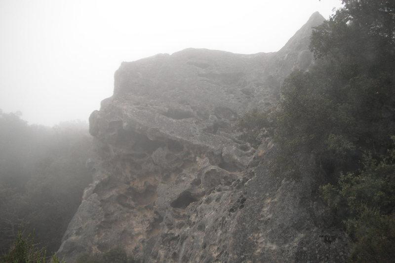 Rock Climbing Photo: Goat in the fog