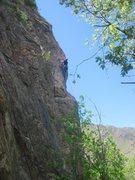 Rock Climbing Photo: Josh leading Beasto.