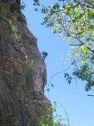 Rock Climbing Photo: Josh high on Beasto.