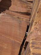 Rock Climbing Photo: swallowed