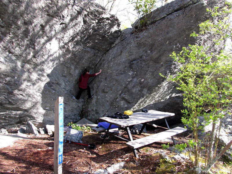 Rock Climbing Photo: Sarene Cullen on Cherokee Dihedral.