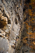 Rock Climbing Photo: Matt Kuehl tries to blend in. Nov 2010 mattkuehlph...