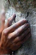 Rock Climbing Photo: Detail shot on Too Many Puppies. mattkuehlphoto.co...