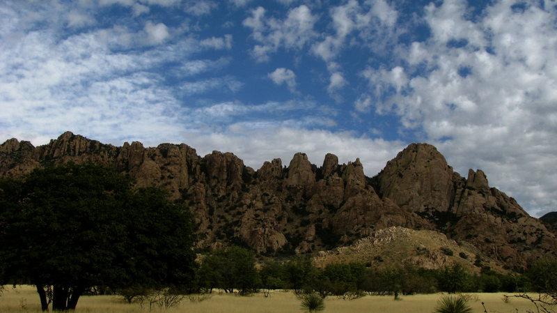 western cochise, sheephead dome