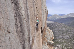 Rock Climbing Photo: Cody Scarpella on The Wasp.