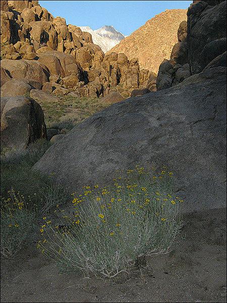 Rock Climbing Photo: Monument Slot Early Morning. Photo by Blitzo.