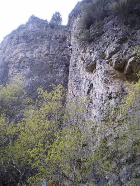Cruzer climbing on [[105885699]] 5.10a.