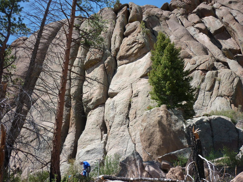 L to R:<br> The Throat, 5.8 (crack behind dead tree).<br> Unnamed, 5.10b (bolted face).<br> Ding, 5.8 (wide crack).<br> Dong, 5.8 (extra wide crack).<br> Wild Cherry, 5.8 (crack below boulder).<br> Mellow Yellow, 5.8 (crack right of fluffy, green tree).
