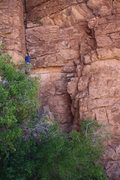 Rock Climbing Photo: Colten starting up Anne