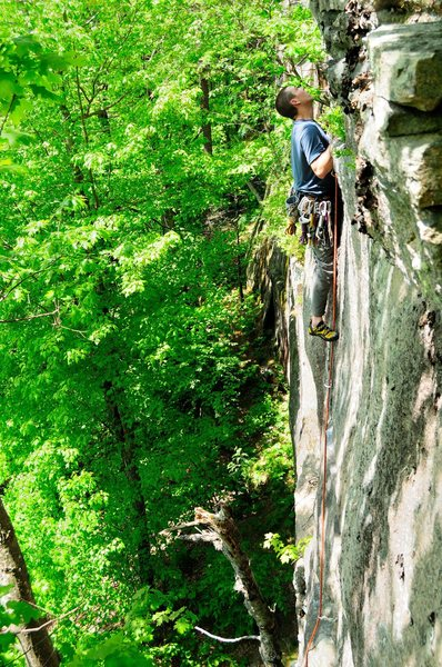 "Rock Climbing Photo: jay checking out the top of ""eastern cougar&q..."
