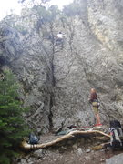 Rock Climbing Photo: Call of the wild