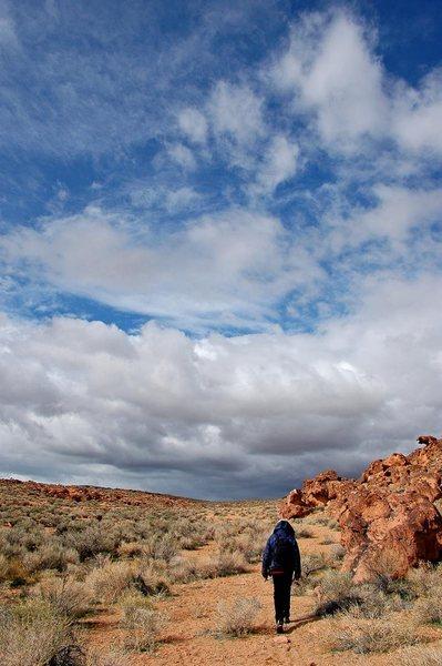 Boulder hunting in the Tablelands
