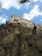 Rock Climbing Photo: Basti at the top of Oma Eichler. Notice that he's ...