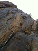 Rock Climbing Photo: Tim Top roping, good pick of the route