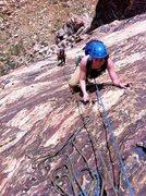 Rock Climbing Photo: Birdland with two followers.