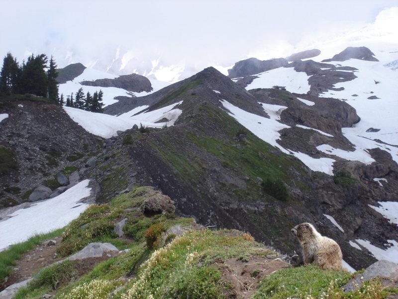 Rock Climbing Photo: Railroad Grade