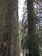 Rock Climbing Photo: John Ross at the last, desperate bit before the ch...