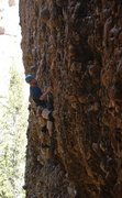 Rock Climbing Photo: Maple 5