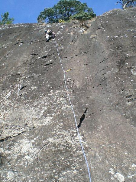 Rock Climbing Photo: Milson on Festival de Lagartos