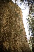 Rock Climbing Photo: Perin the Zen Master
