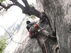 Rock Climbing Photo: Ramsel's first trad lead.