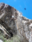 Rock Climbing Photo: Good route, good photo (by Leo), adequate groin, m...