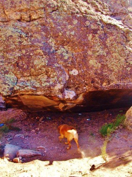 Rock Climbing Photo: Eye of the Beholder problem starts beneath the ove...