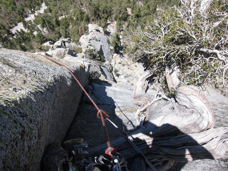 Rock Climbing Photo: Looking down from the tree at the Doubtful Corner.