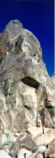 Rock Climbing Photo: Moosedog Tower - Joshua Tree