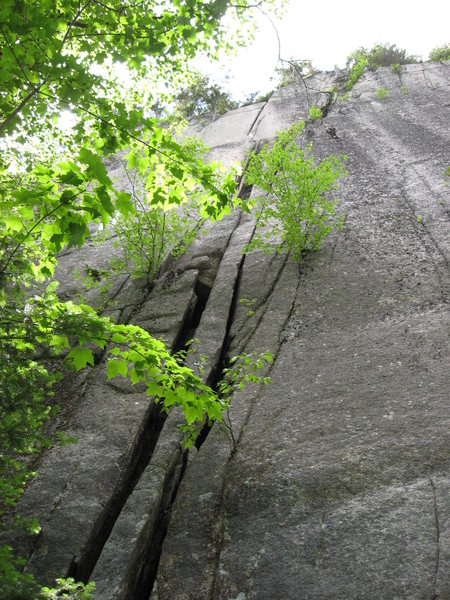 Some 2 pitch potential over at the Northeastern Crags<br> -photo by Christina Callaghan
