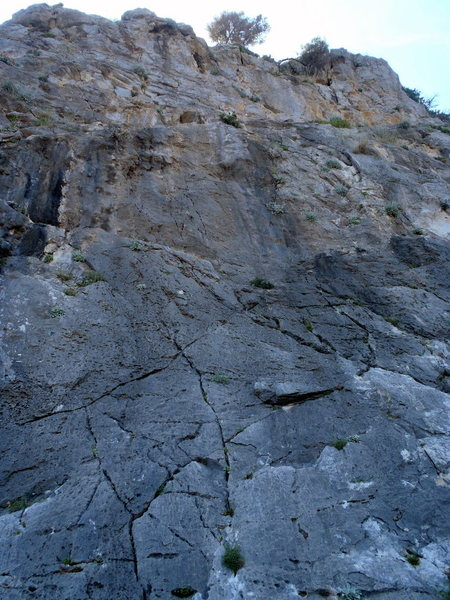 Rock Climbing Photo: Goes up the center of the photo.
