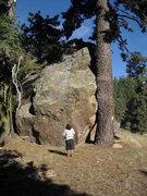 Rock Climbing Photo: Carlo Rivas checking out The Jewel, Pine Mountain.