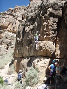 Rock Climbing Photo: Diana leading 'Jack Pot'