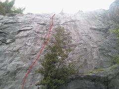 Rock Climbing Photo: Chica Bonita