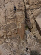 Rock Climbing Photo: Joshua Tree, Lost Tree Area