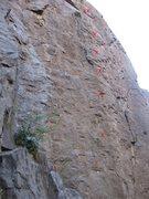 Rock Climbing Photo: Left for Dead