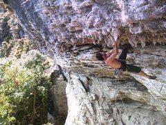 Rock Climbing Photo: Roof climbing at Mangaokewa