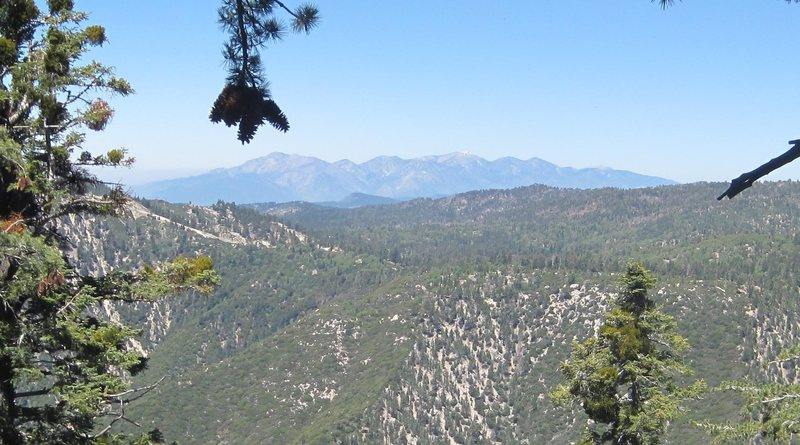 Mount Baldy from Black Bluff.