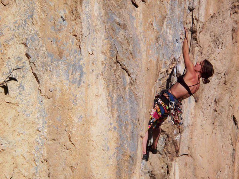 Rock Climbing Photo: Alison Mohr on Pangea, a 5.11d on the Spires, El P...