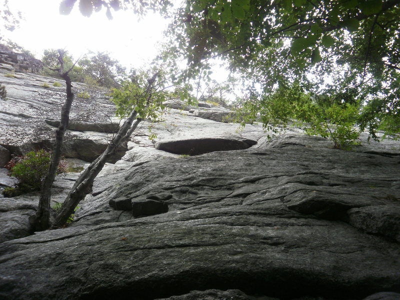 Rock Climbing Photo: Looking up from the ground.  Start on left by thos...