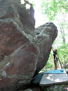 Rock Climbing Photo: Katie Everson sizing up the Ranger Rick Boulder