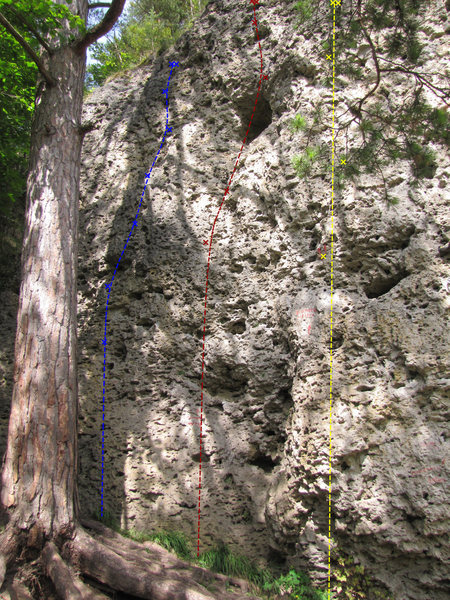Rock Climbing Photo: Blue is Lukas, red is Schlingenweg, yellow is Beam...