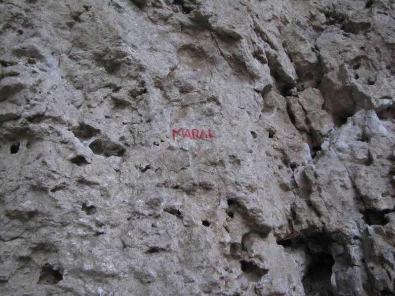 Rock Climbing Photo: The beginning of Maral.