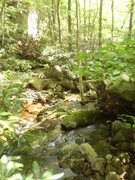 Rock Climbing Photo: Take a dip in the creek after a long day of pumpy ...