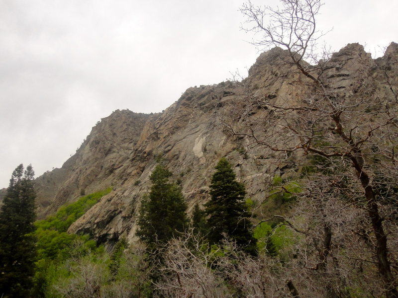 Rock Climbing Photo: Beast from up canyon of crag approach trail. White...
